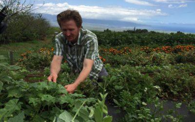 Oko'a Farms