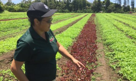 Know Your Farmers:  Aloha 'Āina Organics, Ha'ikū