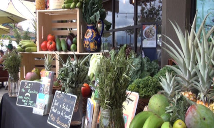 Farm-to-Table Supporters Unite at Fork & Salad!